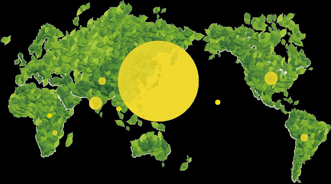 世界での活動実績マップ